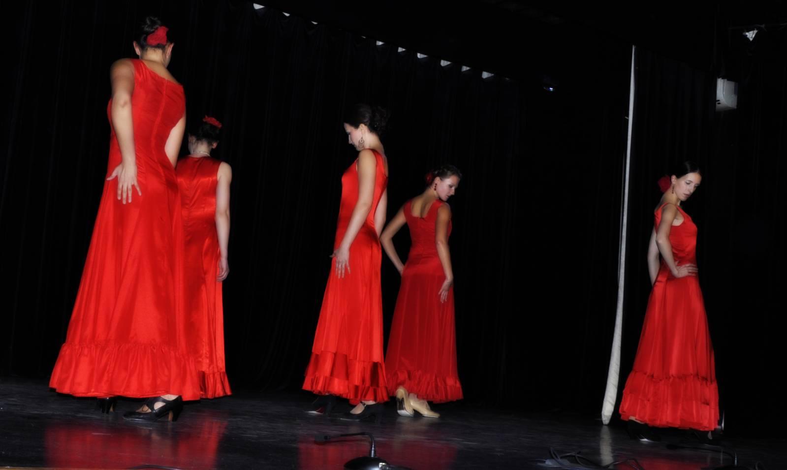 фламенко фото